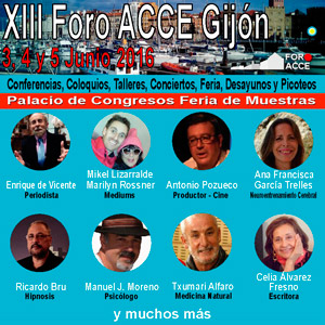 XIII FORO ACCE - Individual