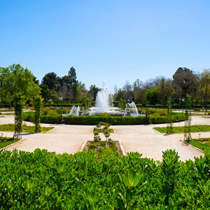Casino gran madrid precio entrada for Precio entrada jardin botanico madrid